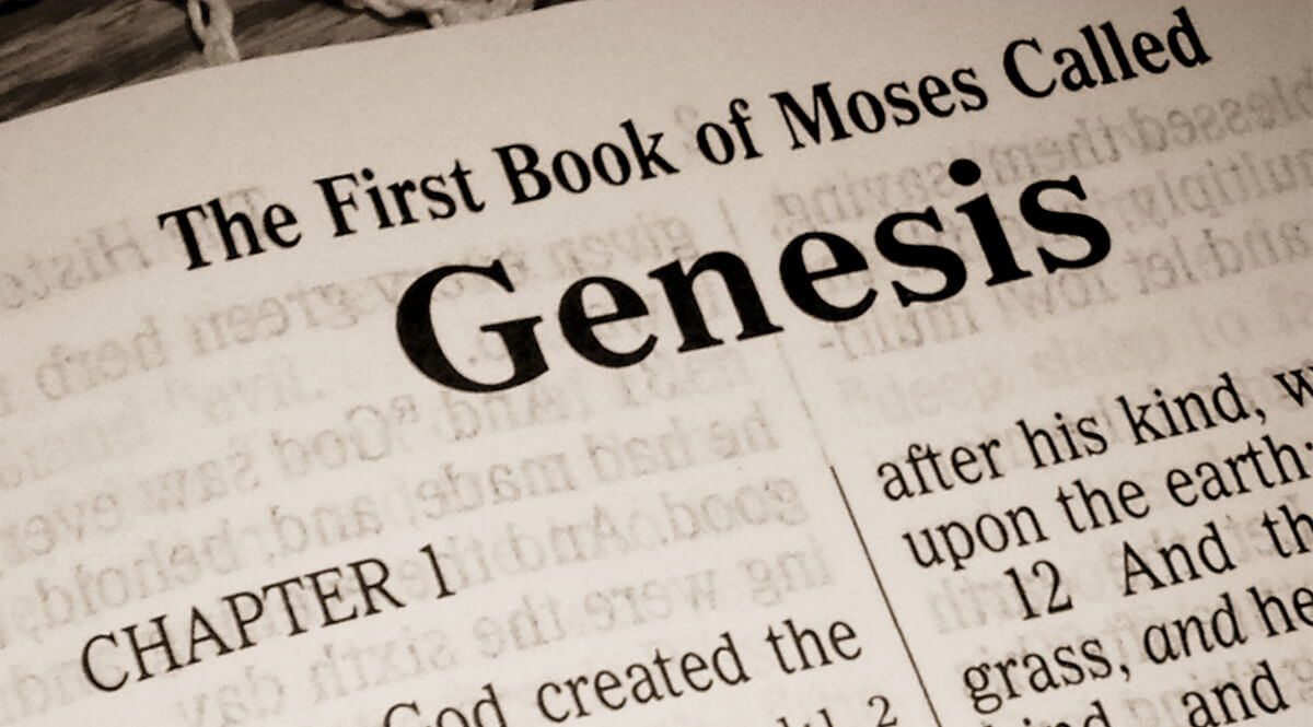 the book of genesis Check your knowledge of the book of genesis with this printable worksheet and corresponding quiz the resources provided can be used to study at.